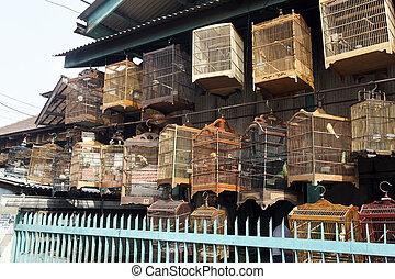 Pramuka bird market, Jakarta, Indonesia, March 2011