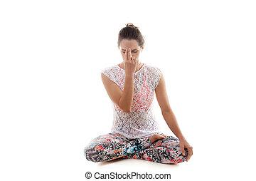 pranayama nadi práctica yoga shodhana pranayama nadi