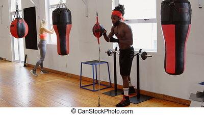 pratiquer, mâle, boxe, boxeur, 4k, fitness, studio