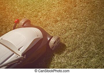 prato, backyard., giorno, grass-cutter, professionale, cura, verde, falciatura, giardinaggio, primo piano, soleggiato, equipment.