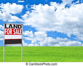 """prawdziwy, łąka, stan, wizerunek, -, znak, konceptualny, """"for, sale"""", opróżniać"""