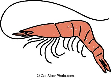 prawn isolated on white drawn in toddler art style