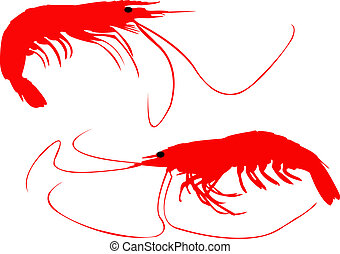 Prawns. - Normal market prawns in red silhouettes.