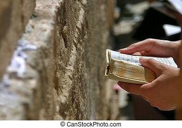 Prayer holds Torah during prayer at Western Wall. - Prayers...