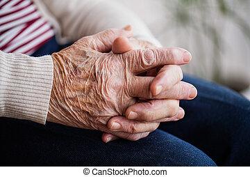 Praying Hands Of A Senior Woman Studio Photography Of Praying Hands