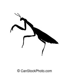 Praying mantis insect black silhouette animal. Vector Illustrator.