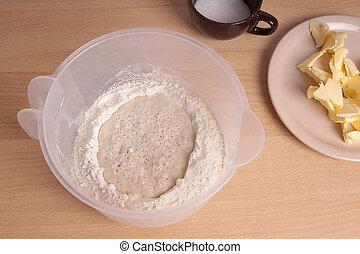 pre-ferment or mother dough or poolish
