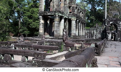 Preah Khan it is translated as A sacred sword. Trees and...