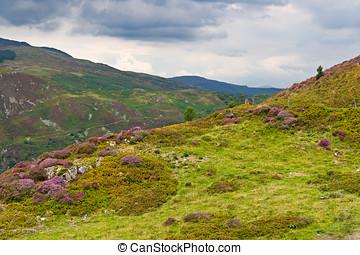 Precipice walk in Snowdonia, Wales