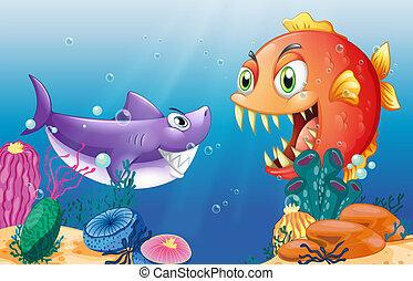 preda, predatore, mare, sotto