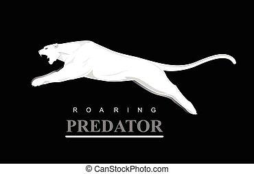 predator., destemido, cougar., pular, puma.