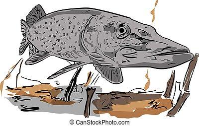 predator in the river