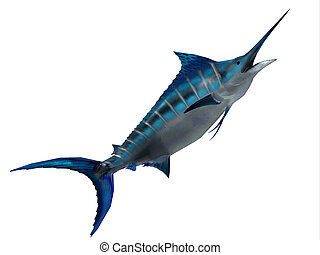 Predator Marlin Fish