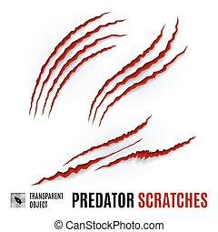 Predator Scratches