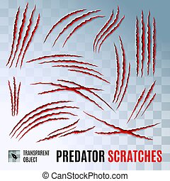 Predators Claws Scratches on Transparent Background. Scratch Claw Animal and Illustration Shred From Claw