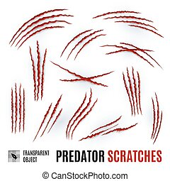 Predator Scratches - Set of Claws Animal Scratches on a...
