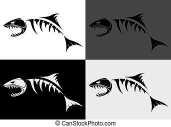 predatory fish skeleton - set of view of predatory fish...