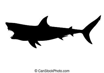 shark - Predatory shark with an open mouth in the form of a ...