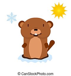 predicts, marmota, tiempo