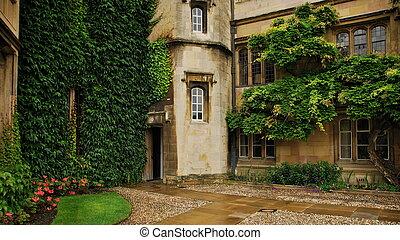 predios, entrada, cambridge, university., detalhe