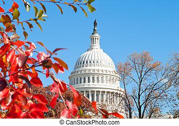 predios, eua., c.c. washington, outono, capital, folhas, vermelho