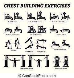 predios, figura, pictograms., peito, vara, exercícios, músculo