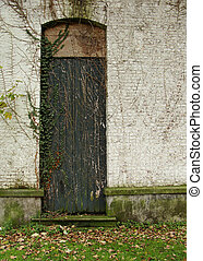 predios, porta, abandonado, parede, sobre, crescendo, branca, hera