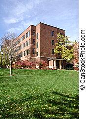 predios, tijolo, campus universidade