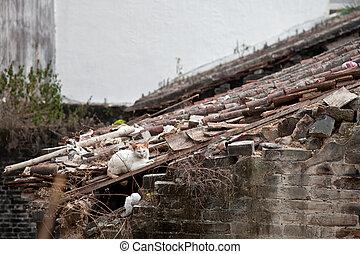 predios, tradicional, telhado, chinês, gato