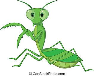 pregando mantis, cartone animato, carino