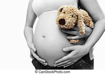 pregnancy - pregnant belly with cute dog mascot