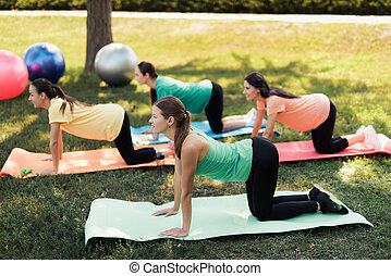 pregnancy yoga three pregnant women are engaged in