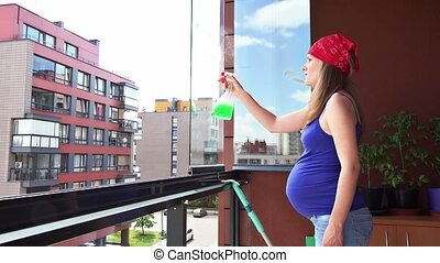 pregnant housewife woman doing her chores at home. Female...
