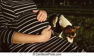 Pregnant woman in striped dress on evening on park witn her...