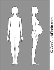 Vector illustration of pregnant female silhouette. Front and side views