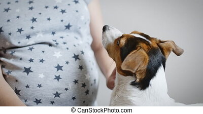 Pregnant woman with her dog