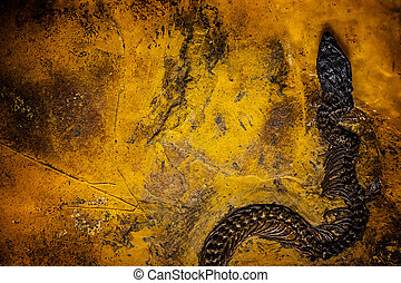 Prehistoric Fossil Background
