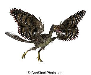 prehistorisch, vogel