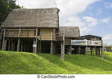 prehistoryczny, pile-dwelling