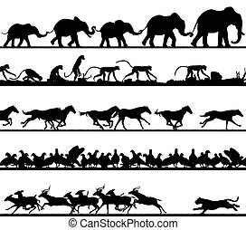 premier plan, silhouettes, animal