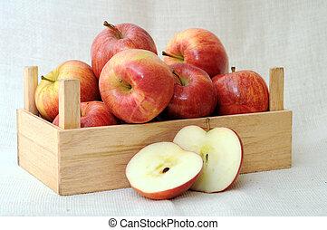 premium gala apples in crate