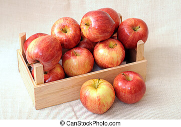 gala apples - premium gala apples in crate
