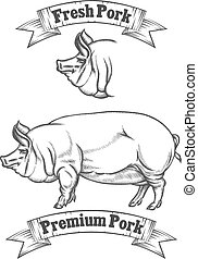 Premium pork meat vector label, butcher emblems or logo. Fresh pig, badge for restaurant, product butchery illustration