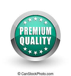 Premium quality silver metallic chrome web design green round internet icon with shadow on white background.
