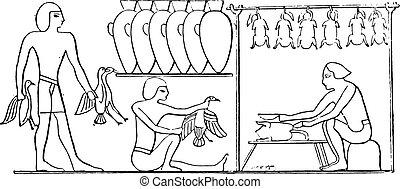 preparação, vindima, aves domésticas, engraving.