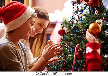 preparando, árbol de navidad