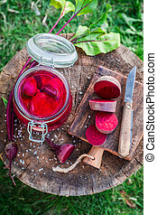 Preparation for canned beetroots in summer