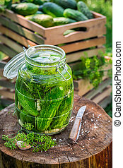 Preparation for canned cucumber in summer
