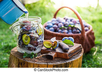 Preparation for canned plums in summer