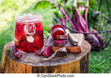 Preparation for pickled beetroots in summer